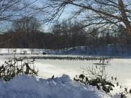 Snow '16 Lake Best